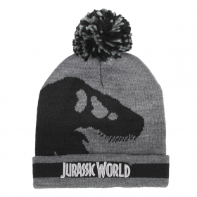 Jurassic Park autumn / winter hat