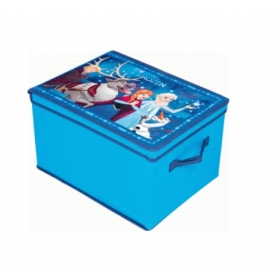 Frozen storage box