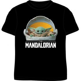 Star Wars adult t-shirt
