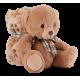 Soft plush bear with blanket